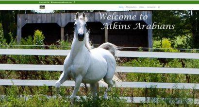 Atkins Arabians